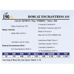 Bobcat Enchantress 335