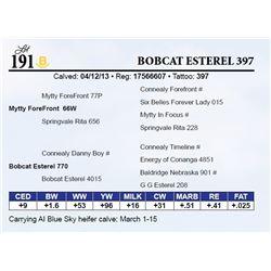 Bobcat Esterel 397
