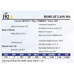 Bobcat Lass 303