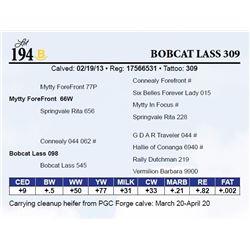 Bobcat Lass 309