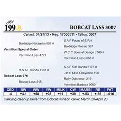 Bobcat Lass 3007