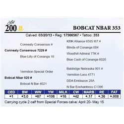 Bobcat Nbar 353