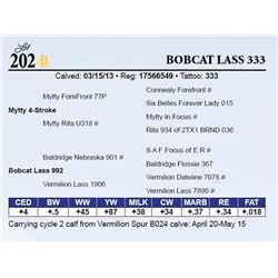 Bobcat Lass 333