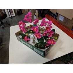 4 ARTIFICIAL PLANTS