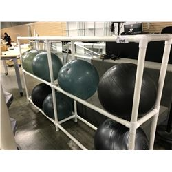 4 BAY WHITE PVC WHITE EXERCISE RACK WITH 5 YOGA BALLS