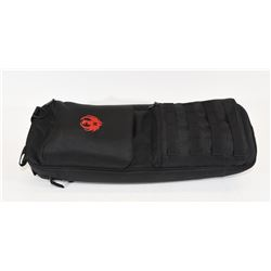 Ruger 10/22 Take Down Case