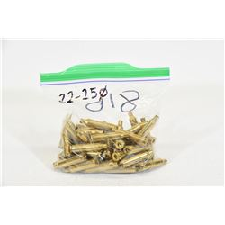 50 Pieces of 22-250 Brass