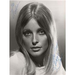 Sharon Tate Signed Photograph
