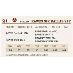 RAWES SIR DALLAS 21F
