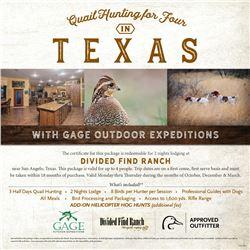 Texas Quail Hunt for 4