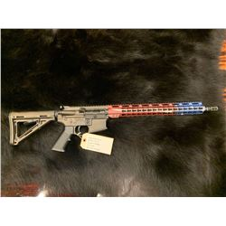 "Wise Arms AR Rifle ""We the People Edition"""