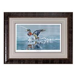 """Wood Duck Slide"" by Scot Storm"