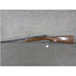 Non-Restricted -  Hiawatha (Cooey Model 39) in Long Rifle