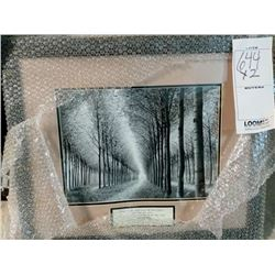29'' x 23'' 2 ASSORT NATURE CHRISTIAN WOOD FRAME RETAIL $79.00