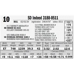 SD Indeed 3188-0511