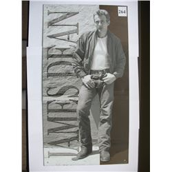 JAMES DEAN Tin Sign - 8 1/2 inches by 16 inches