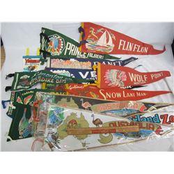 Lot of 14 vintage pennants
