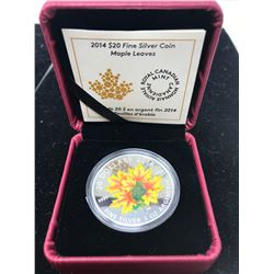2014 Colourized Maple Leaves $20. A beautiful colourized sugar maple leaf coin by artist Celia Godki