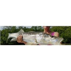 Florida Fishing with High Adventure Sportfishing