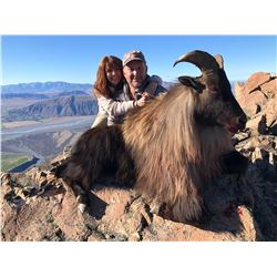 5 Day New Zealand Bull Tahr Hunt with South Pacific Safaris