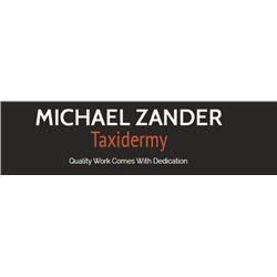 Taxidermy, Shoulder Mount – Whitetail, Mule Deer or Antelope
