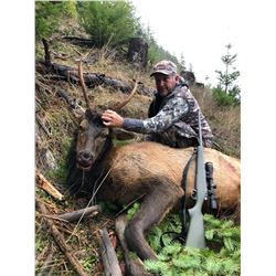 Oregon 5 Day Spike Roosevelt Elk Hunt for 2