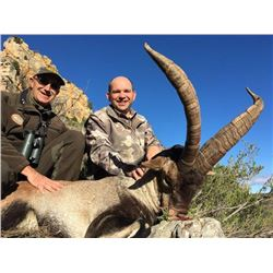 Management Ibex hunt in Beceite Mountains of Spain