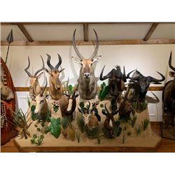 Pedestal Shoulder Mount for any animal up to Elk Size