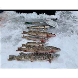 North Dakota Pike Spearing/Ice Fishing for 2