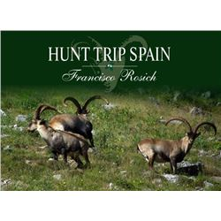 4 Day Roe Deer w/Hunt Trip Spain