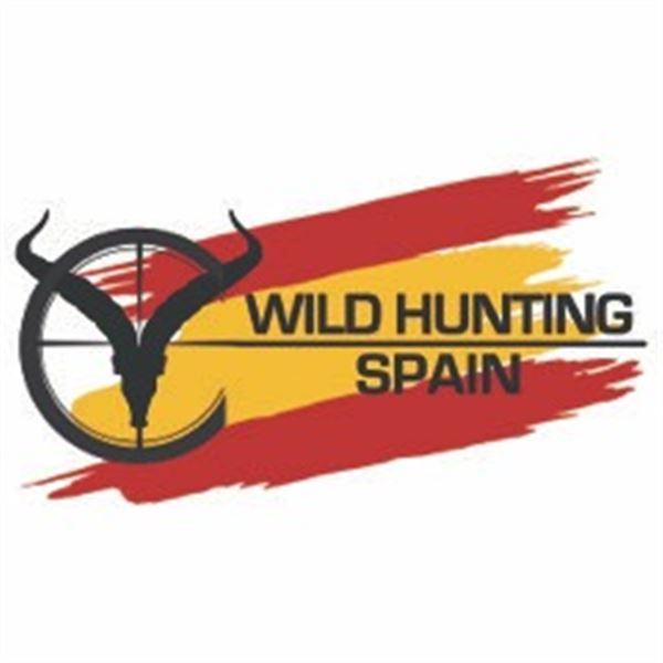 2 Hunter 2 Observer 3 Day Pyrenean Chamois/ Roe Deer Spain Hunt