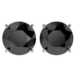 4.19 ctw Fancy Black Diamond Solitaire Stud Earrings 10k White Gold - REF-68R8K
