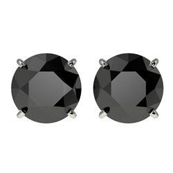 3.18 ctw Fancy Black Diamond Solitaire Stud Earrings 10k White Gold - REF-60K3Y