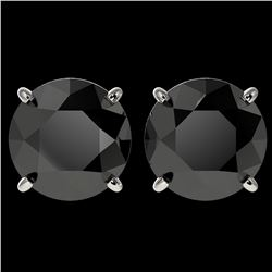 4.19 ctw Fancy Black Diamond Solitaire Stud Earrings 10k White Gold - REF-68H8R