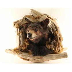 Brown Bear Mount