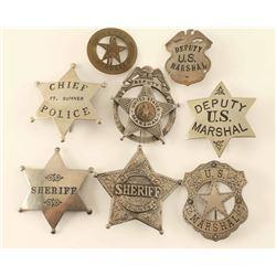 Lot of 8 Badges