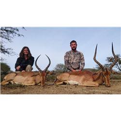 Impala & Warthog Hunt