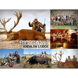 Big Game Hunt-- 1 Blackbuck, 1 Wild Boar