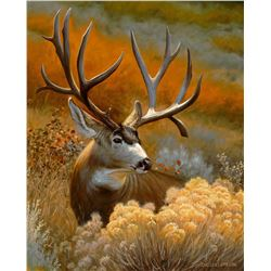"""""""Lone Ranger""""  16 x 20 Elegantly Framed Oil Painting on Canvas"""