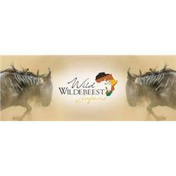 South African Impala Hunting Safari - Wild Wildebeest Safaris