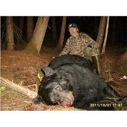 Giant Minnesota Black Bear Hunt