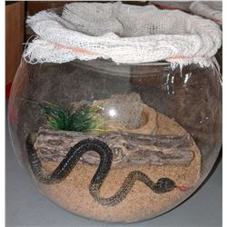 A terrarium displays from the movie