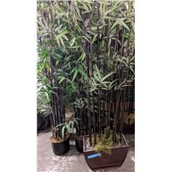 7 artificial bamboo plants