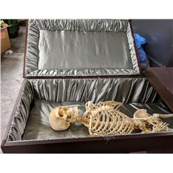 Wooden casket with stand from the movie (skeleton not included)