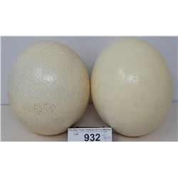 2 Vintage Ostrich Eggs
