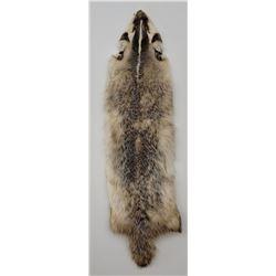 Montana Taxidermy Badger Fur Hide Pelt