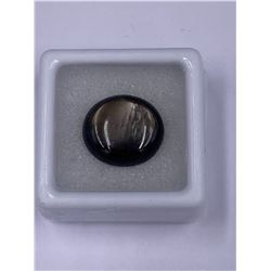 PERFECT 6 RAYS SAPPHIRE 13.44CT 15.0 X 13.4 X 5.5MM, GOLDEN BLACK COLOR, OVAL CABOCHON SHAPE,