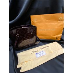 LOUIS VUITTON PURSE WITH CARRY OUT BAG AND DUST BAG