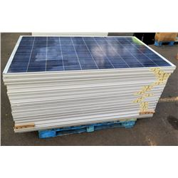Qty 19 Canadian Solar Panels Model Type CS6P-250P