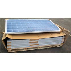 Qty 7 Phono Solar Panels Module Type PS300P-24/T